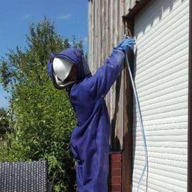 Traitement professionnel contre nid de guêpes